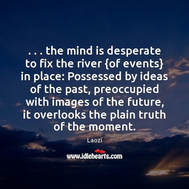 Image, . . . the mind is desperate to fix the river {of events} in place: