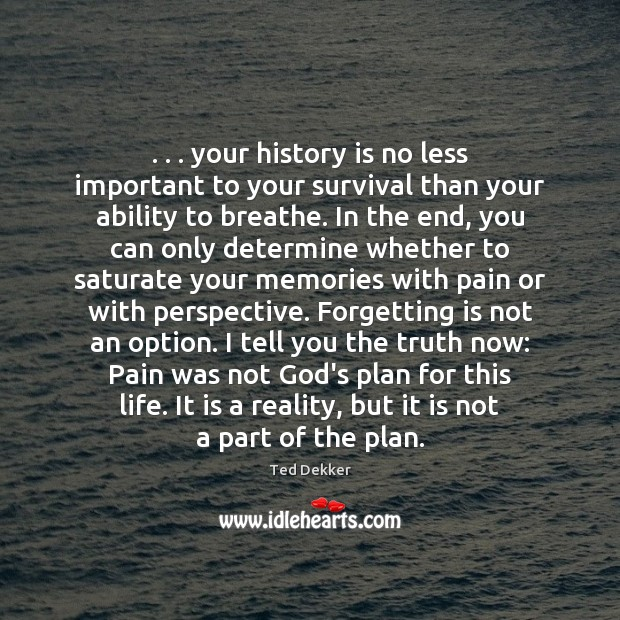 . . . your history is no less important to your survival than your ability Image