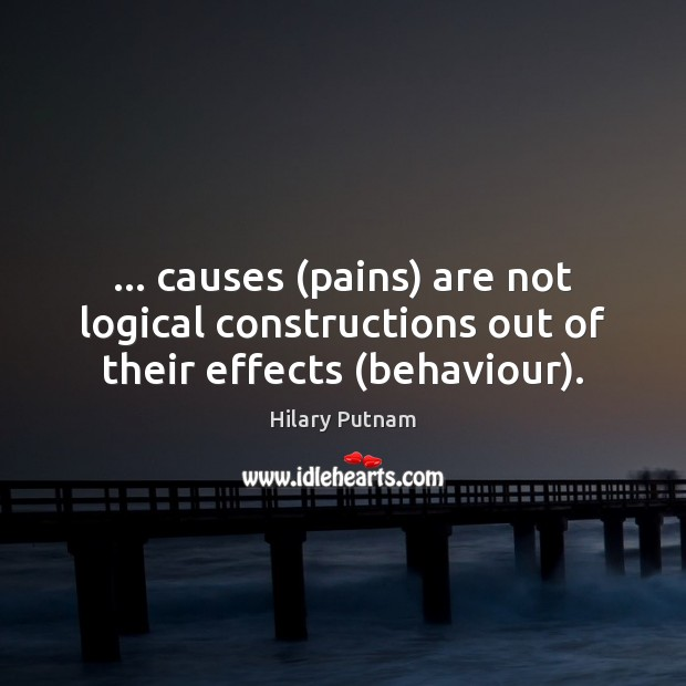 Image, … causes (pains) are not logical constructions out of their effects (behaviour).