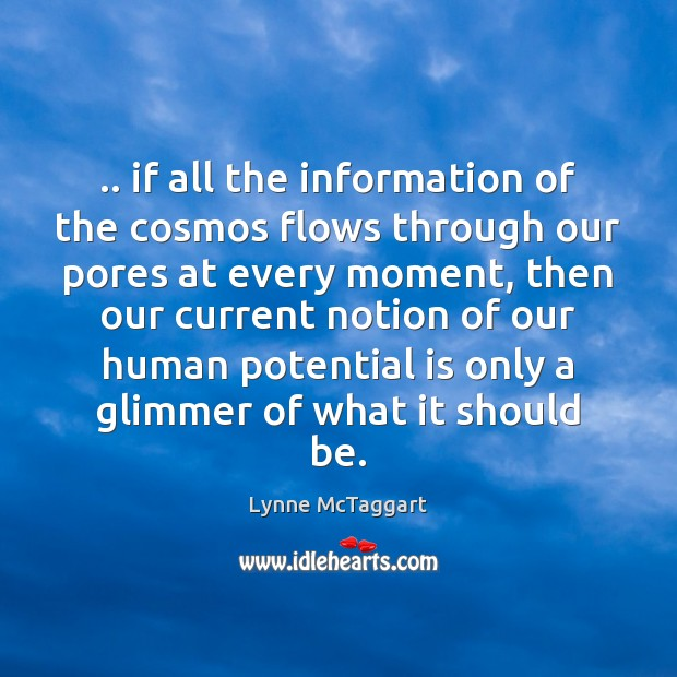 .. if all the information of the cosmos flows through our pores at Lynne McTaggart Picture Quote