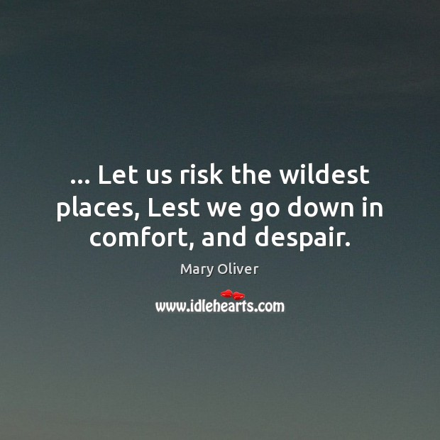 … Let us risk the wildest places, Lest we go down in comfort, and despair. Mary Oliver Picture Quote