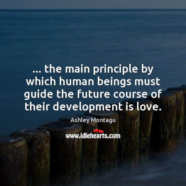 Image, … the main principle by which human beings must guide the future course