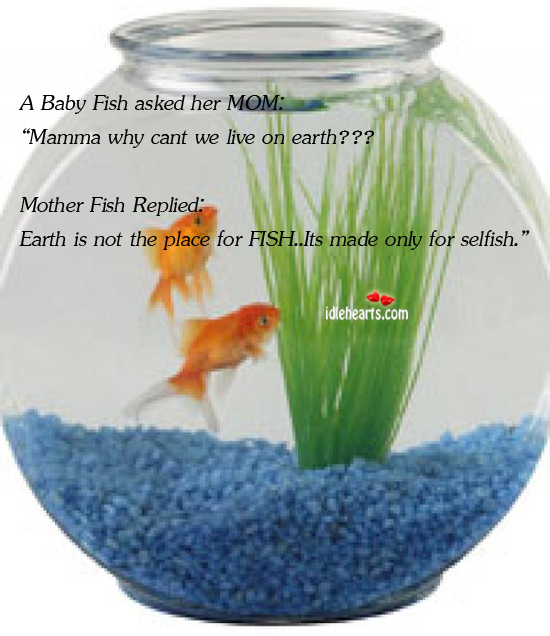 "A Baby Fish Asked Her MOM: ""Mamma Why…"