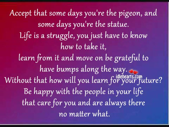Accept That Some Days You're The Pigeon, And Some Days You're The Statue.