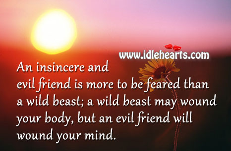 An insincere and evil friend is more to be feared than a wild beast Image