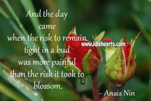 And The Day Came When The Risk To Remain Tight In A Bud…