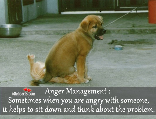 Anger Management: Sometimes When You Are…..