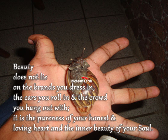 Beauty Does Not Lie On The Brands You Dress In…