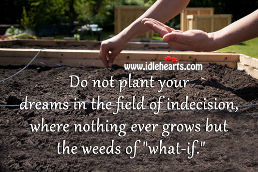 Do Not Plant Your Dreams In The Field Of Indecision.