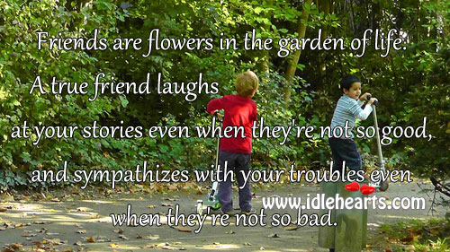 Friends Are Flowers In The Garden Of Life.