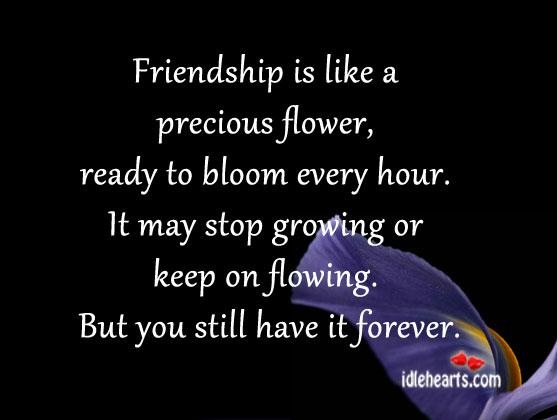 Friendship Is Like A Precious Flower…