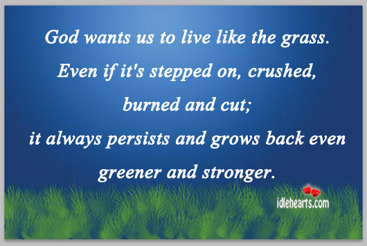 God Wants Us To Live Like The Grass.