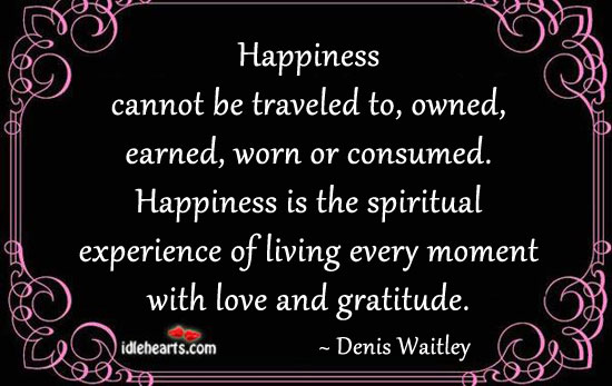 Happiness Cannot Be Traveled To, Owned, Earned…