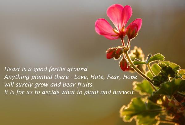 Bear, Fear, Good, Ground, Grow, Hate, Heart, Hope, Life, Love