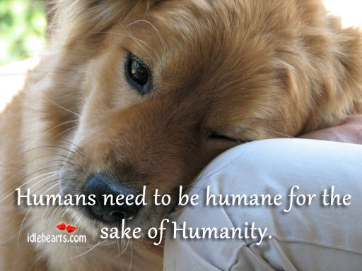 Humans Need to be Humane For The Sake of Humanity