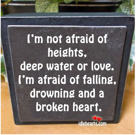 I'm Not Afraid Of Heights, Deep Water Or Love.