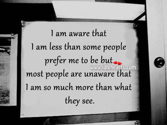 I Am Aware That I Am Less Than Some People Prefer Me To Be