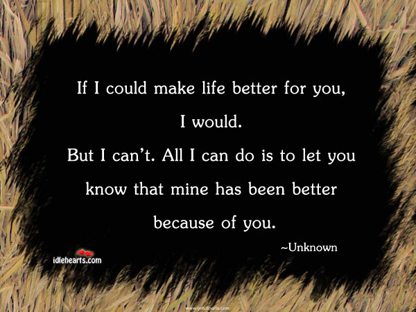 If I Could Make Life Better For You, I….