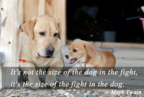 It's Not The Size Of The Dog In The Fight…