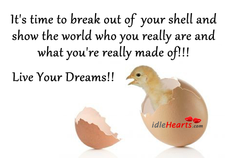 It's Time To Break Out Of Your Shell And Show….