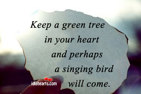 Keep A Green Tree In Your Heart And….