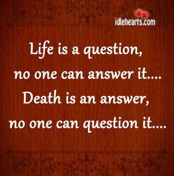 Life Is A Question, No One Can Answer.