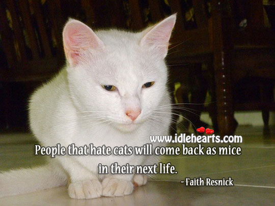 People that hate cats Hate Quotes Image