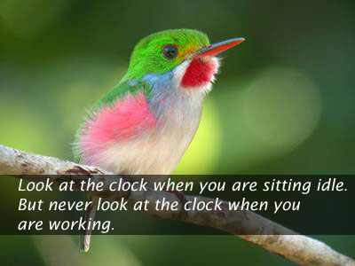 Image, Never look at clock when you are woking