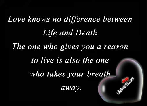 Love knows no difference between life and death the. Image