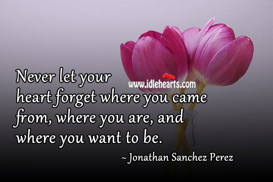 Never Let Your Heart Forget Where You Came From