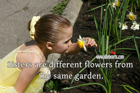 Sisters are different flowers from the same garden. Sister Quotes Image