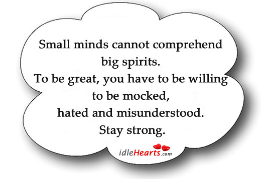 Small Minds Cannot Comprehend Big Spirits.