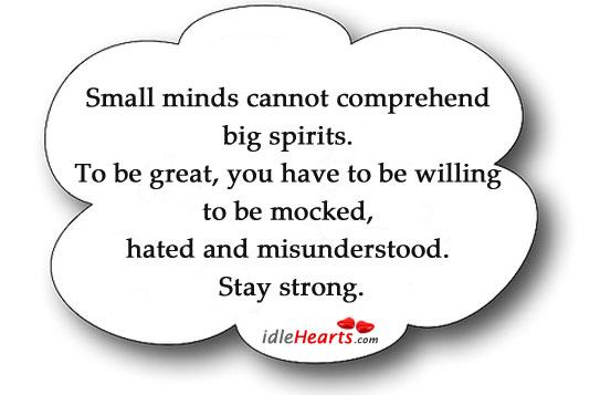 Small minds cannot comprehend big spirits. Image