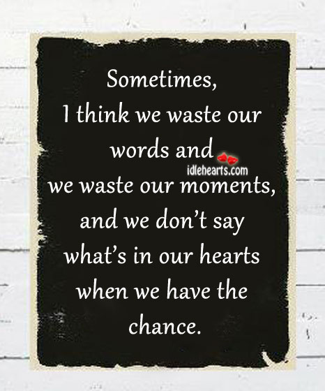 Sometimes, I Think We Waste Our Words And…