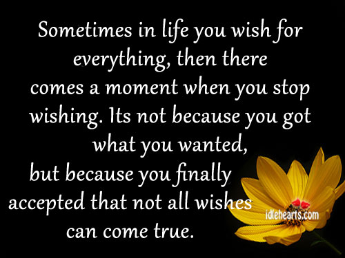 Sometimes In Life You Wish For Everything…