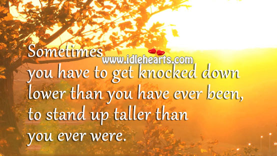 Stand up taller than you ever were. Image
