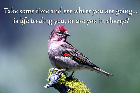 Take Some Time and See Where You Are Going….