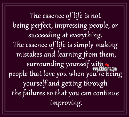 The Essence Of Life Is Not Being Perfect