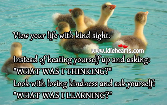 View Your Life With Kind Sight.