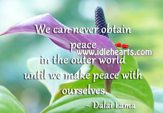 We can never obtain peace in the outer world Image