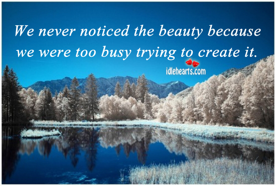 We Never Noticed The Beauty Because We…