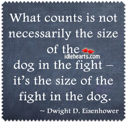 What Counts Is Not Necessarily The Size Of The Dog….