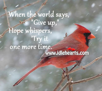 "When The World Says, ""Give Up"" Hope Whispers, ""Try It"""