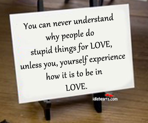 You Can Never Understand Why People Do Stupid Things For Love…