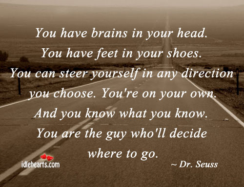 You Can Steer Yourself In Any Direction You Choose.