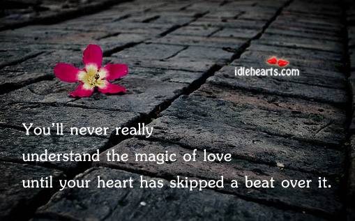You'll Never Really Understand The Magic of Love