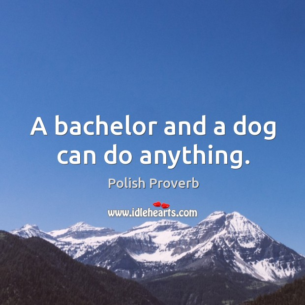 A bachelor and a dog can do anything. Polish Proverbs Image