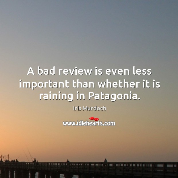 A bad review is even less important than whether it is raining in patagonia. Image