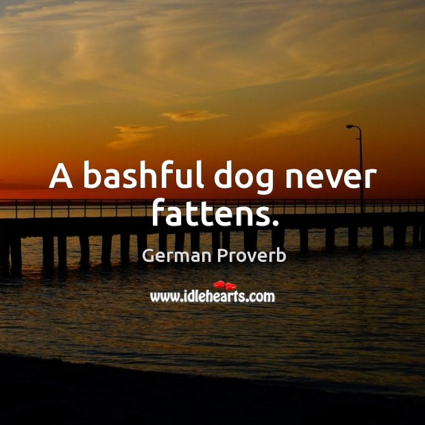 A bashful dog never fattens. German Proverbs Image