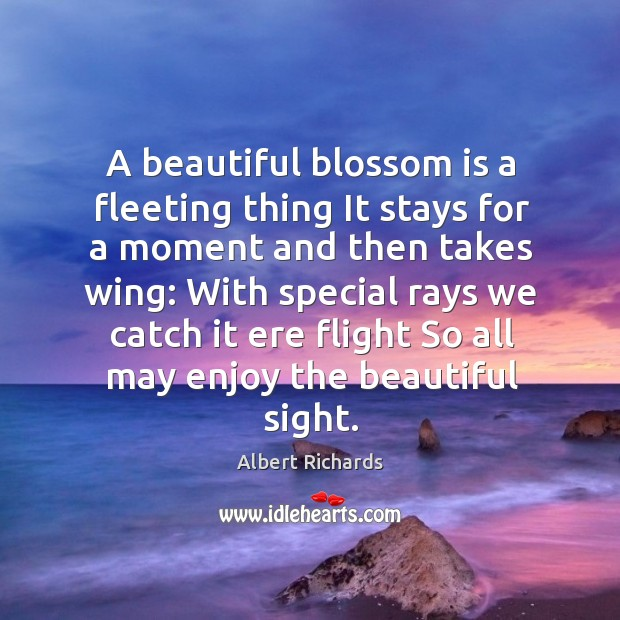 A beautiful blossom is a fleeting thing It stays for a moment Image